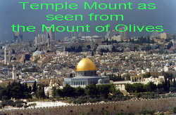 Temple Mount as seen from  Mt. of Olives