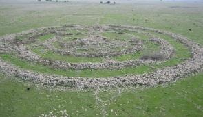 Roga-Megalith